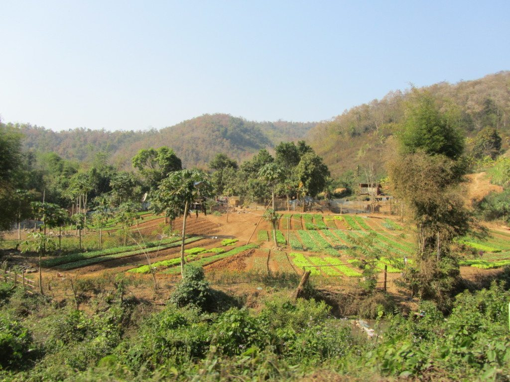 Luang Prabang Laos  City pictures : If you enjoyed this post, make sure you subscribe to my RSS feed ! You ...
